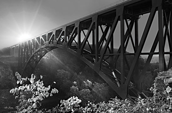 Lori Deiter LD1974 - LD1974 - Sunrise at Letchworth Black & White - 18x12 Bridge, Sunrise, Black & White, Photography, Letchworth from Penny Lane