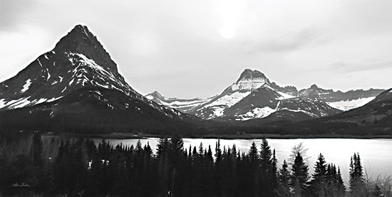 Lori Deiter LD2208 - LD2208 - Swiftcurrent Lake - 18x9 Mountains, Trees, Pine Trees, Glacier, Landscape, Photography, Black & White from Penny Lane