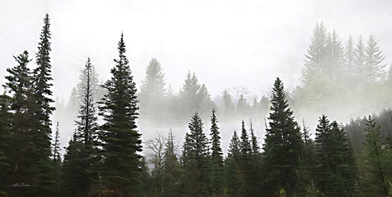 Lori Deiter LD2210 - LD2210 - Schwabachers Landing Trees - 18x9 Trees, Pine Trees, Morning Mist, Lake, Photography, Morning, Black & White from Penny Lane