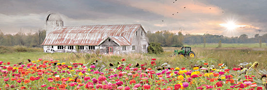 Lori Deiter LD2264A - LD2264A - Vermont Country Morning - 36x12 Farm, Barn, Flowers, Tractor, Field, Morning, Sunlight, Photography from Penny Lane