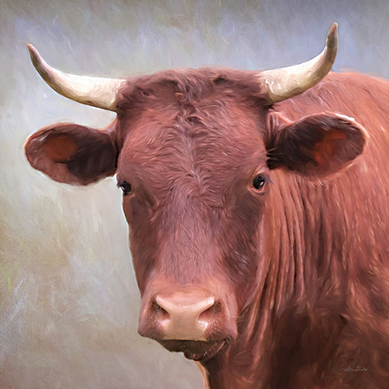 Lori Deiter LD2277 - LD2277 - Bull Face - 12x12 Bull, Cow, Portrait, Photography from Penny Lane