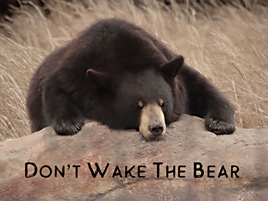 Lori Deiter LD2400 - LD2400 - Don't Wake the Bear - 16x12 Don't Wake the Bear, Bear, Photography, Wildlife from Penny Lane