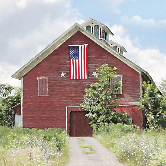 Lori Deiter LD2446 - LD2446 - Breath of Liberty - 12x12 Barn, Farm, Patriotic, Americana, American Flag, Photography from Penny Lane