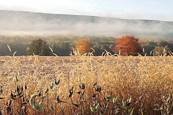 Lori Deiter LD2591 - LD2591 - Autumn Shades - 18x12 Wheat Field, Harvest, Autumn, Farm, Trees, Photography from Penny Lane