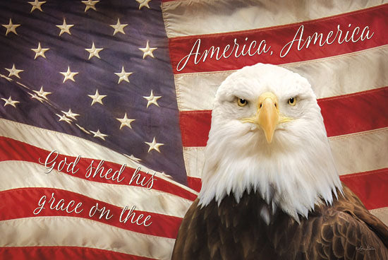 Lori Deiter LD711 - American Eagle Flag - Eagle, American Flag, Patriotic from Penny Lane Publishing