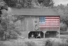 LD774 - Patriotic Farm I - 18x12