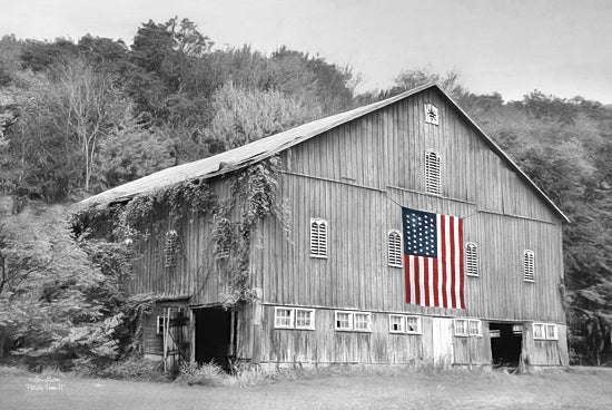 Lori Deiter LD775 - Patriotic Farm II - Patriotic, Barn, Black and White, Landscape from Penny Lane Publishing