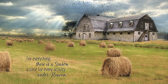 Lori Deiter LD782 - A Time to Reap - Haystacks, Religious, Farm, Barn, Birds, Inspirational from Penny Lane Publishing