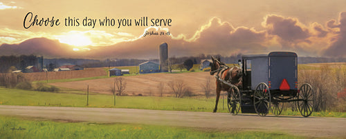 Lori Deiter LD845A - Choose the Day - Amish, Horse and Buggy, Landscape, Inspirational, Animals, Photography, Religion, Sign from Penny Lane Publishing