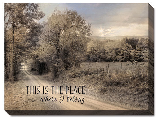 Lori Deiter LD856 - This is the Place Where I Belong - Road, Path, Sheep, Landscape, Inspirational, Animals, Photography, Tree, Path, Sign from Penny Lane Publishing