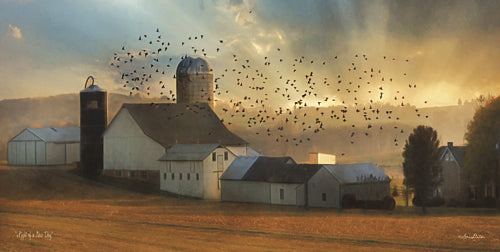 Lori Deiter LD912 - Light of a New Day - Farm, Homestead, Birds, Landscape, Inspirational, Photography, Farm Life from Penny Lane Publishing