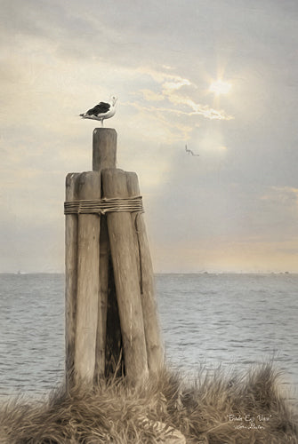 Lori Deiter LD923 - Birds Eye View - Bird, Water, Sun, Post, Landscape, Coastal, Photography from Penny Lane Publishing