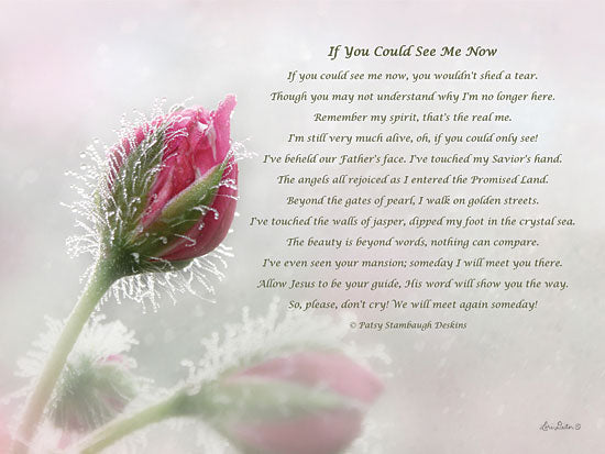 Lori Deiter LDXD229 - If You Could See Me Now - Motivating, Loved One, Flowers from Penny Lane Publishing