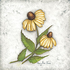 MARY548 - Yellow Coneflowers - 12x12