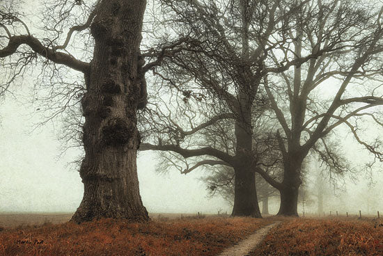 Martin Podt MPP144 - Misty Trees - Trees, Mist, Landscape from Penny Lane Publishing
