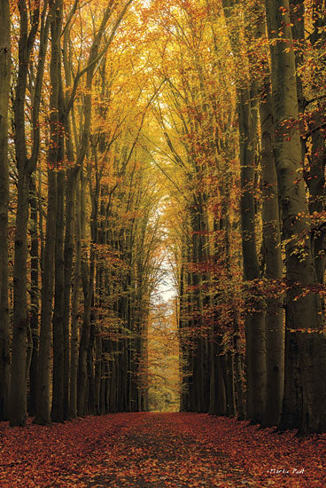 Martin Podt MPP148 - Highway to Heaven - Path, Trees, Forest, Landscape from Penny Lane Publishing