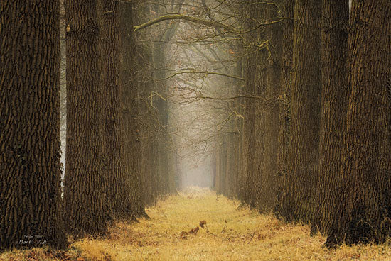 Martin Podt MPP171 - Yellow Path - Path, Trees, Forest, Landscape from Penny Lane Publishing