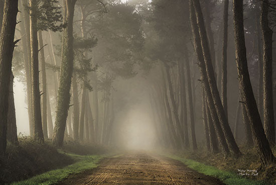 Martin Podt MPP177 - Misty Morning - Trees, Paths, Misty, Landscape from Penny Lane Publishing