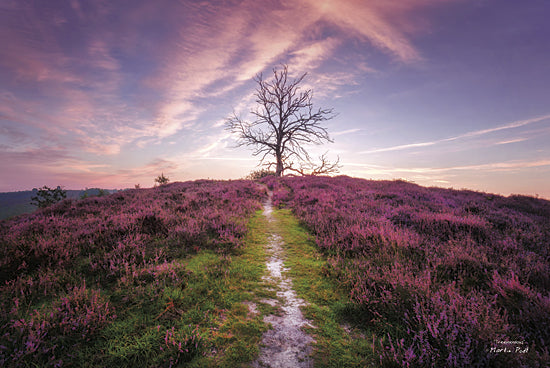 Martin Podt MPP224 - Treemendous - Tree, Path, Purple, Landscape, Nature, Photography, Trees from Penny Lane Publishing