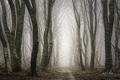 Martin Podt MPP327 - Forest Dreams - Trees, Misty, Landscape, Forest from Penny Lane Publishing