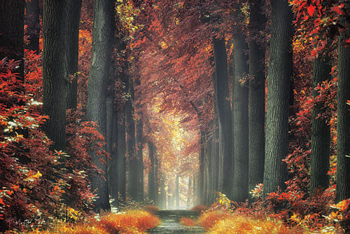 Martin Podt MPP331 - Color Me Red - Autumn, Trees, Path, Forest from Penny Lane Publishing