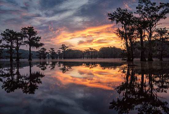 Martin Podt MPP605 - MPP605 - Sunrise in the Swamps - 18x12 Photography, Trees, Lake, Sunset, Swamp from Penny Lane