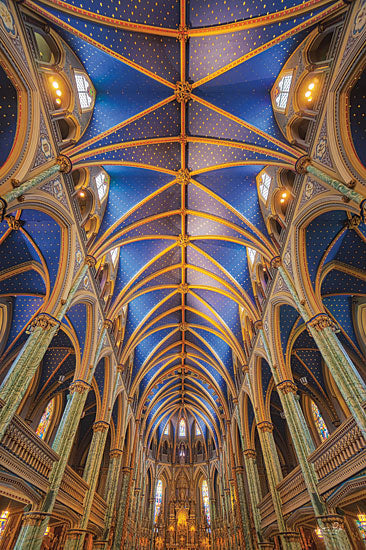 Martin Podt MPP606 - MPP606 - Notre-Dame Cathedral Basilica - 12x18 Photography, Notre-Dame, Cathedral, Basilica, Iconic from Penny Lane
