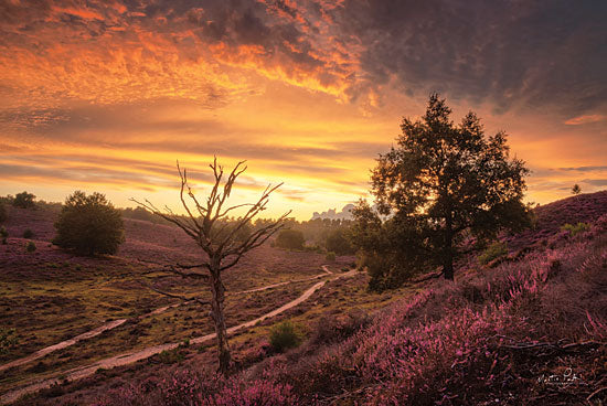Martin Podt MPP618 - MPP618 - Dead Tree at Sunset - 18x12 Photography, Trees, Dirt Path, Flowers, Sunset, Landscape from Penny Lane