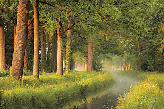 Martin Podt MPP691 - MPP691 - Spring Morning - 18x12 Trees, Creek, Sunlight, Morning, Spring, Photography from Penny Lane