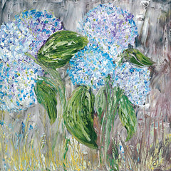REAR161 - Hydrangeas in Bloom