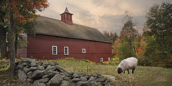Robin-Lee Vieira RLV383 - The Lone Grazer  - Sheep, Farm, Barn, Grazing, Landscape from Penny Lane Publishing
