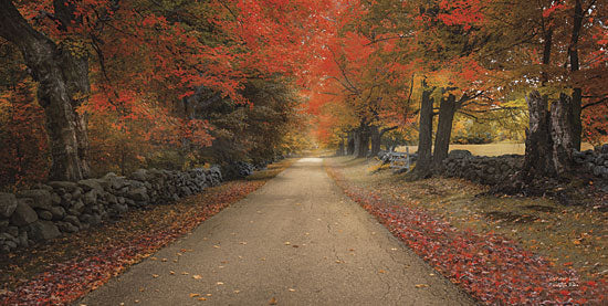 Robin-Lee Vieira RLV386 - October Lane - Trees, Autumn, Path from Penny Lane Publishing