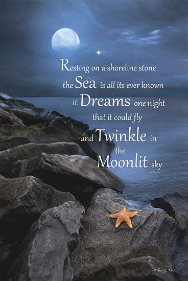 Robin-Lee Vieira RLV422 - The Dream - Starfish, Rocks, Moon, Inspirational from Penny Lane Publishing