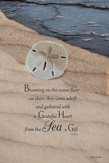 Robin-Lee Vieira RLV423 - The Gift - Sand Dollar, Coastal, Beach, Ocean, Inspirational from Penny Lane Publishing