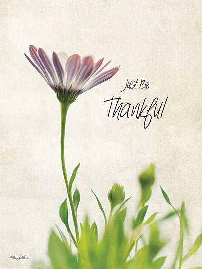 Robin-Lee Vieira RLV431 - Just be Thankful - Daisy, Inspirational from Penny Lane Publishing