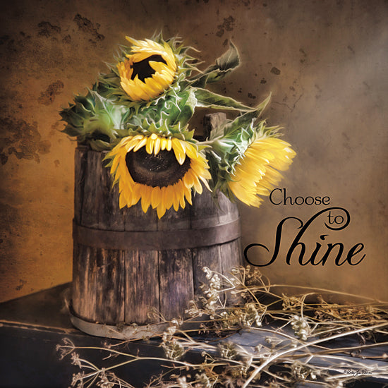 Robin-Lee Vieira RLV530 - Choose to Shine - Sunflower, Bucket, Inspirational from Penny Lane Publishing