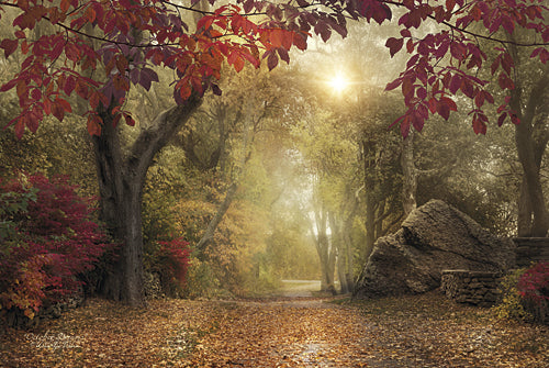 Robin-Lee Vieira RLV570 - October Dreams - Trees, Path, Landscape, Photography, Sign, Fall from Penny Lane Publishing