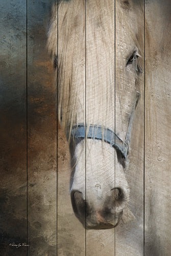 Robin-Lee Vieira RLV629 - Old Gray Mare - Horse from Penny Lane Publishing