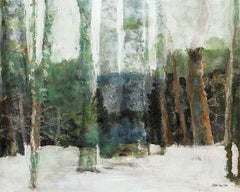 SDS322 - Winter Forest - 16x12