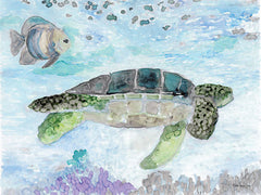 SDS346 - Swimming Sea Turtle - 16x12