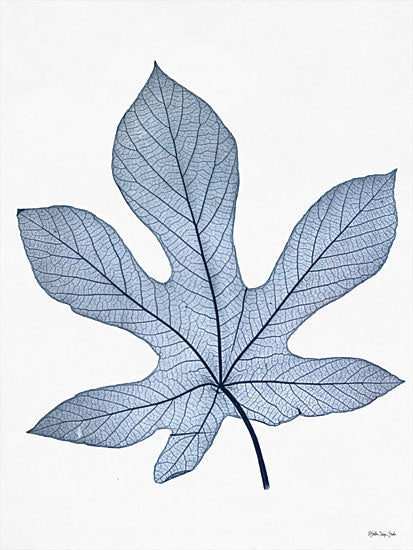 Stellar Design Studio SDS431 - SDS431 - Indigo Nature Study III - 12x16 Indigo Nature Study, Leaf, Blue and White, Botanical from Penny Lane