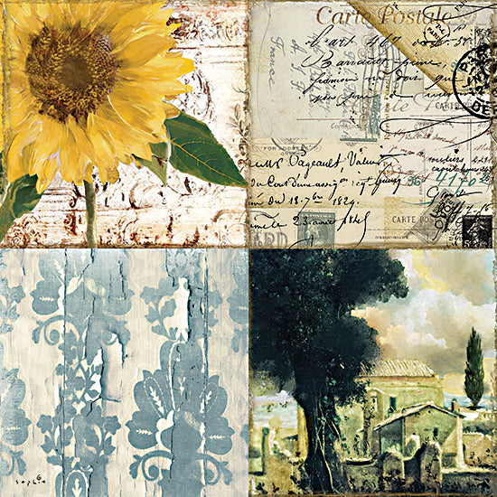 Sophie 6 SIX186 - SIX186 - Tuscany Autumn II - 12x12 Autumn, Sunflower, Flowers, Trees, Collage, Four Blocks, Shabby Chic, Country French, Color Bakery from Penny Lane