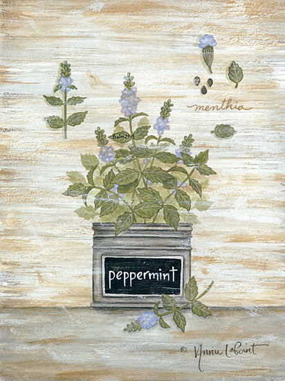 Annie LaPoint ALP1817 - Peppermint Botanical - 12x16 Herbs, Peppermint, Botanical, Country French, Shabby Chic from Penny Lane