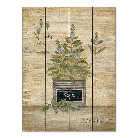 Annie LaPoint ALP1819PAL - Sage Botanical Herbs, Sage, Botanical, Country French, Shabby Chic from Penny Lane