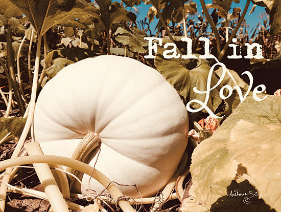 Anthony Smith ANT136 - Fall in Love Fall in Love, White Pumpkins, Harvest, Pumpkin Patch, Farm from Penny Lane