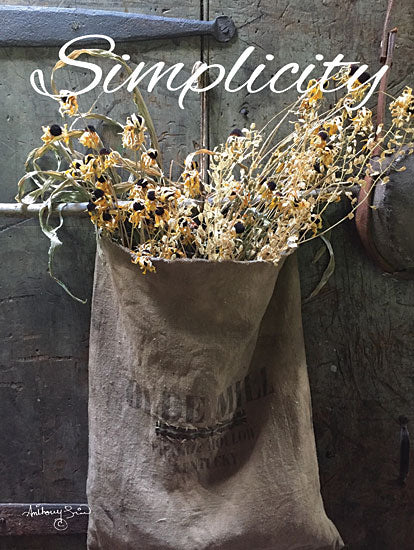 Anthony Smith ANT140 - Simplicity Simplicity, Sunflowers, Flowers, Autumn, Grain Sack from Penny Lane