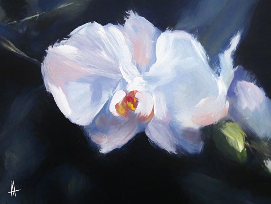 Anne Thouthip AT118 - AT118 - Oriental Beauty - 16x12 Flowers, Abstract, White Flowers from Penny Lane