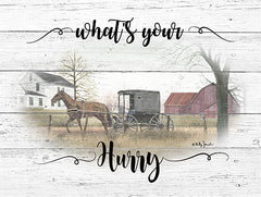BJ1219 - What's Your Hurry - 16x12
