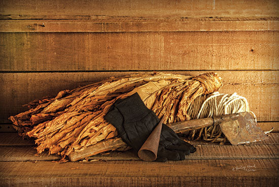 Susie Boyer BOY398 - Tobacco - 18x12 Tabaco, Gloves, Harvesting, Still Life, Photography from Penny Lane