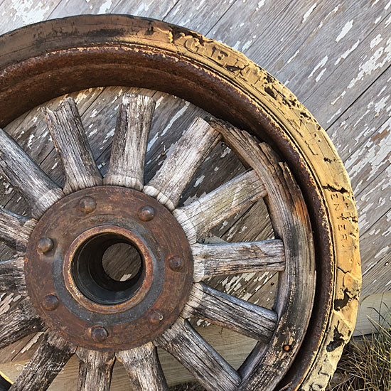 Cindy Jacobs CIN1138 - Old Wheel II Wheel, Antique from Penny Lane